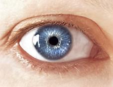 plave oci